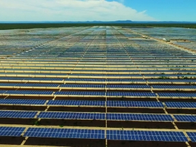 Inicia operaciones el parque solar Lapa, de 158 MW, el mayor del país