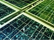 El sector solar fotovoltaico, satisfecho con la propuesta de Orden Ministerial de Subastas a cinco años vista