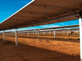Soltec suministra 101 MW de su seguidor solar a la planta fotovoltaica Floresta