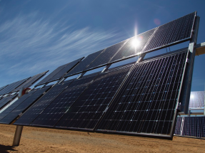 Powertis inicia la construcción de dos parques fotovoltaicos que suman 225 MW de potencia