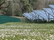 El brexit no asusta al Santander, que acaba de adquirir diez parques solares en Reino Unido
