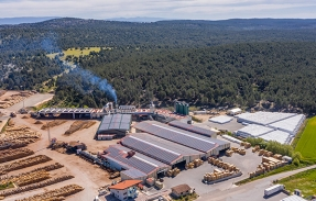 Burpellet, la biomasa fotovoltaica