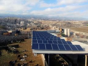 Los ganaderos canarios se vuelcan con las renovables