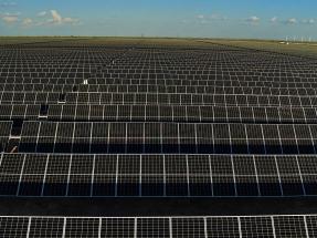 Texas: Comienza a operar Roadrunner, de casi 500 MW, la mayor planta fotovoltaica del estado