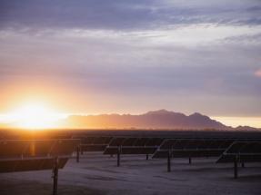 Arizona: Para respaldar un centro de datos, Facebook adquiere 450 MW de plantas fotovoltaicas de Salt River Project
