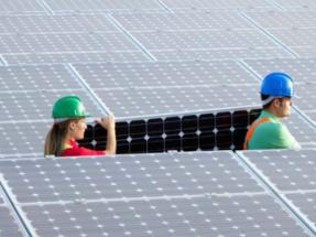 Las renovables superan los diez millones de empleos en el mundo