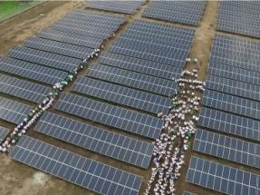 Inauguran una planta fotovoltaica en una universidad