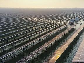260 MW fotovoltaicos sobre una piscifactoría en China