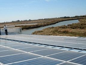 Criar doradas con renovables ahorra un 30% de oxígeno y otro 30% de electricidad