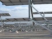 Soltec suministrará 80 MW en seguidores solares