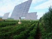 La energía solar abarata el riego hasta un 70%