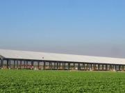 Conergy instalará un sistema solar de 725 kW para el procesamiento de almendras en California