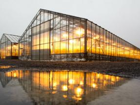 La geotérmica puede ayudar (y mucho) a mejorar la seguridad alimentaria