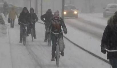 Casi el 25% de los holandeses va a trabajar en bicicleta