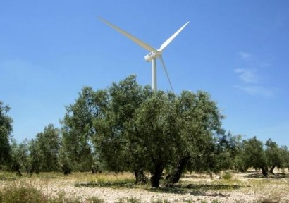 Andalucía, primera en biomasa eléctrica, termosolar y producción de biocarburantes
