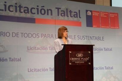 CHILE: Subastarán casi 8 mil hectáreas de terrenos fiscales para proyectos de energía eólica
