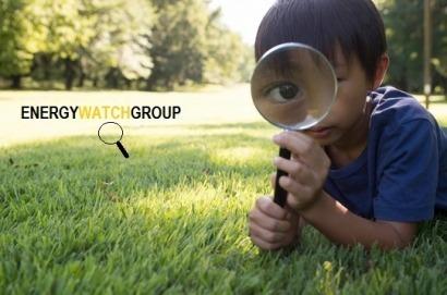 Energy Watch Group acusa a la AIE de falsear sus informes sobre renovables