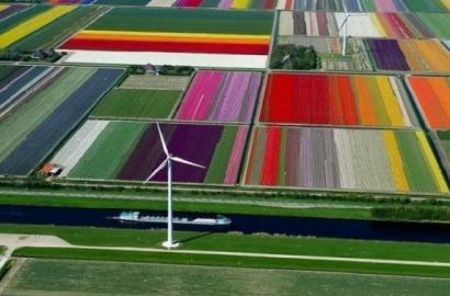 El 16% de la energía final que consumió la UE en 2014 salió de fuentes renovables