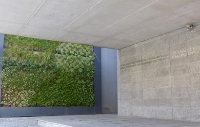 Los jardines verticales siguen ganando espacio