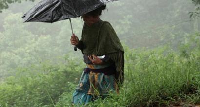 Récord de millones invertidos en el mundo para hacer frente al cambio climático