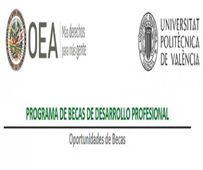 La OEA anuncia becas para un curso de Energía Solar Fotovoltaica