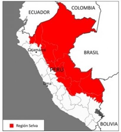 Anuncian la llegada del programa Luz en Casa a la región amazónica