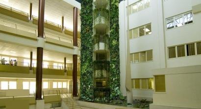 Un jardín vertical puede reducir la temperatura de un edificio hasta 10ºC