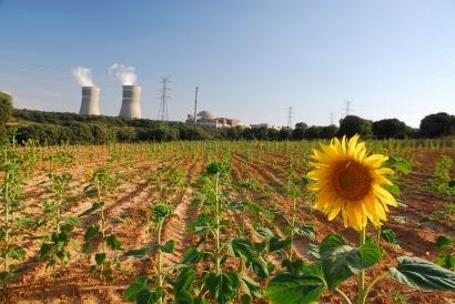 APPA denuncia una gravísima discriminación hacia las renovables