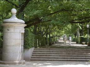 El Bosque Urbano de Madrid evita la emisión de medio millón de toneladas de carbono al año