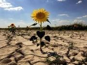 Una Visión Climática para limitar el calentamiento global a 1,5 grados