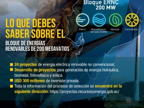 El gobierno lanza una licitación por 200 MW renovables