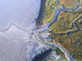 El poder osmótico de los estuarios de los ríos podría ser utilizado para generar energía