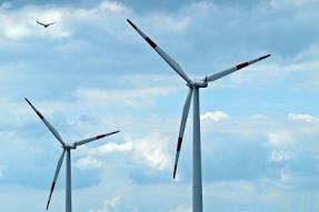 Eurosolar hace un llamamiento a los políticos: tenemos que salir de la crisis con energías renovables