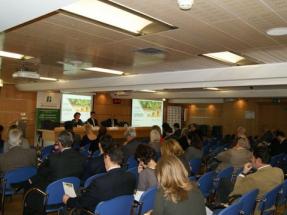 El Banco Europeo de Inversiones debería destinar parte de su capital a la sostenibilidad