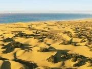 El Cabildo de Gran Canaria crea el primer Consejo Insular de la Energía