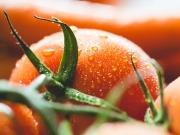 El tomate eléctrico