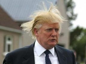 Ganó Donald Trump ¿qué pasará con las renovables?