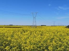 BID Invest financia la primera línea de transmisión verde para fortalecer el sector de energía