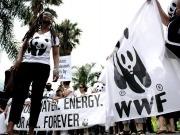 WWF pide a Rajoy objetivos ambiciosos, vinculantes y coherentes en clima y energía