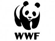 WWF celebra la aprobación de la Ley de Cambio Climático