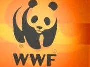 """WWF celebra la aprobación de la """"imprescindible"""" ley de cambio climático y transición energética"""