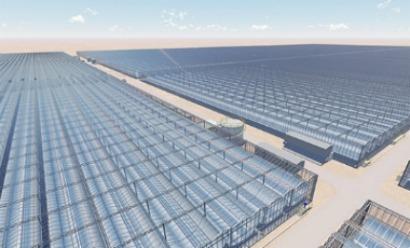 Comienza la construcción de Miraah, la planta de energía solar de vapor más grande del mundo