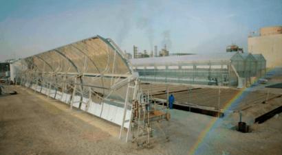 Pepinos cultivados con agua marina y energía solar en pleno desierto