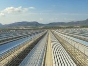 El presidente de Murcia inaugura la planta termosolar Fresnel más grande del mundo